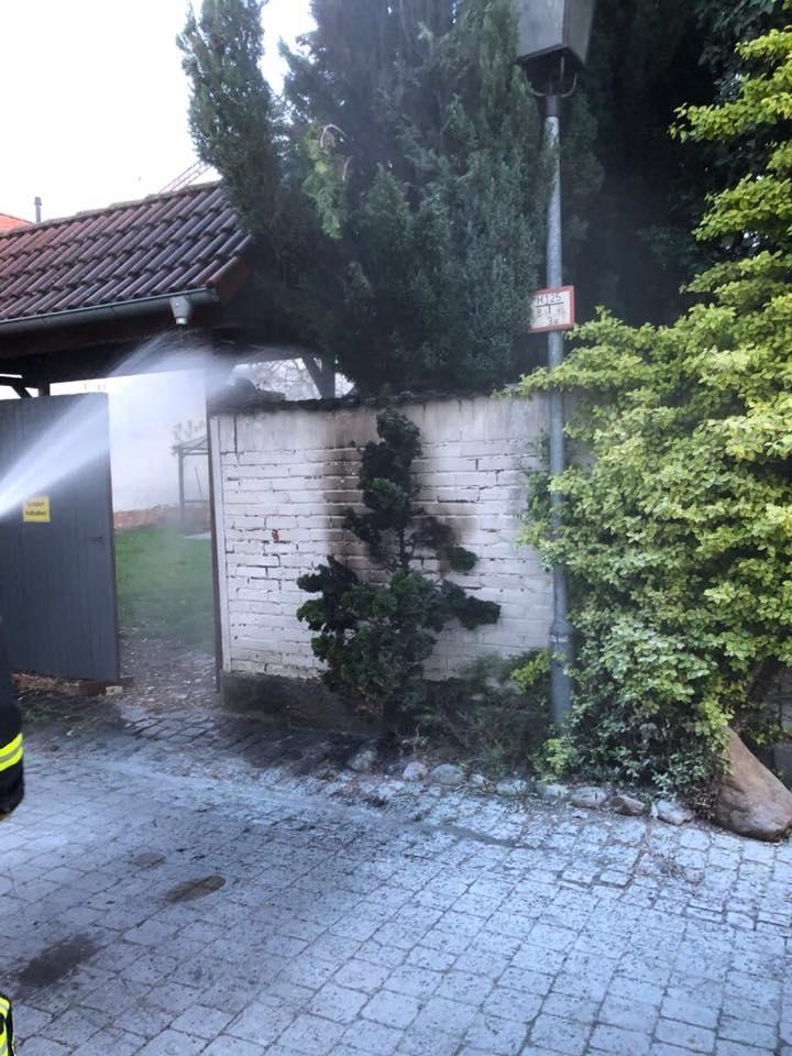 Bildergalerie brennt Baum in Obertorstraße